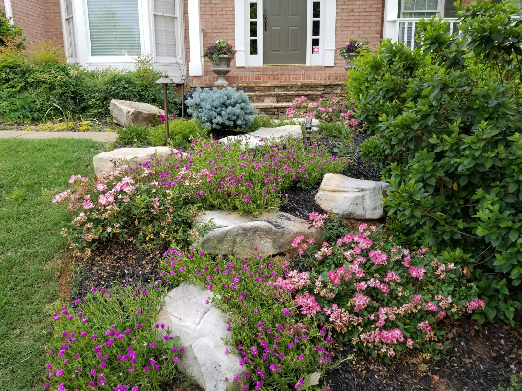 front yard with pink and purple flowers, green landscaping, large rocks, and outdoor path lights in front of brick house