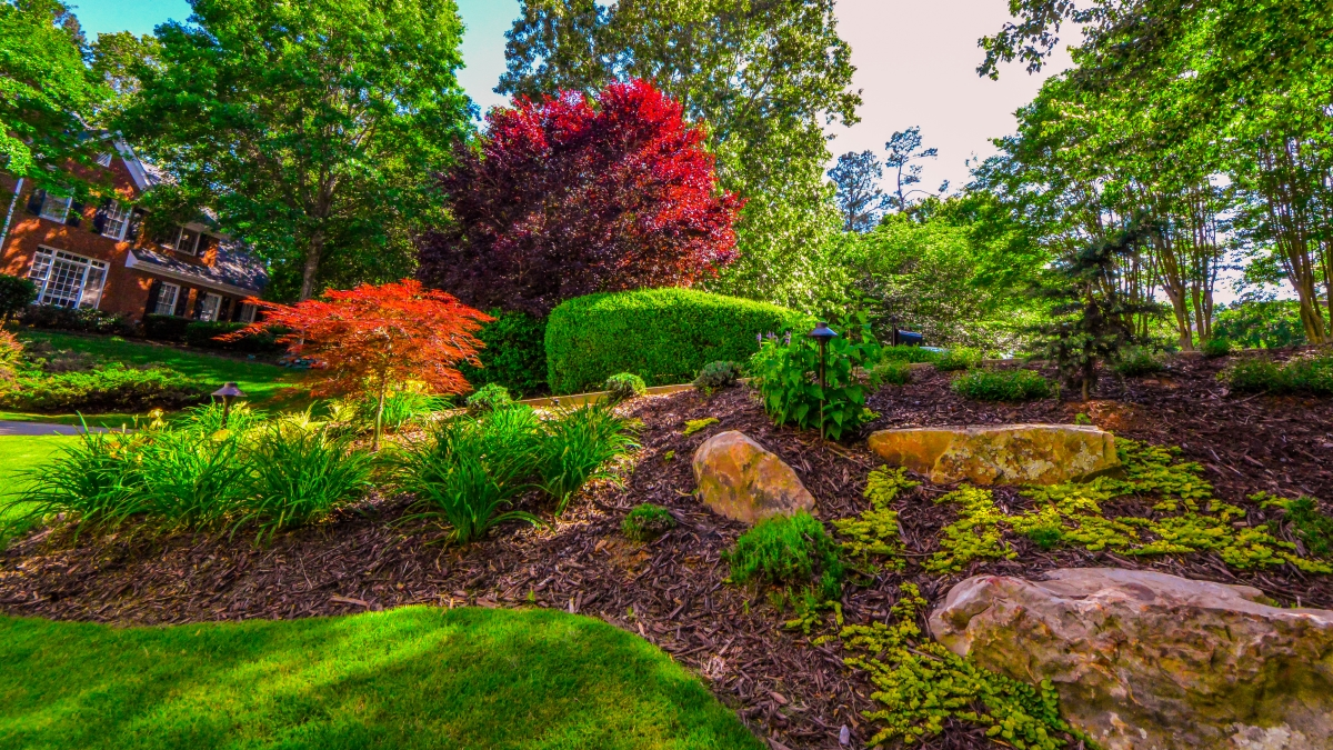 frontyard landscaping in atlanta ga