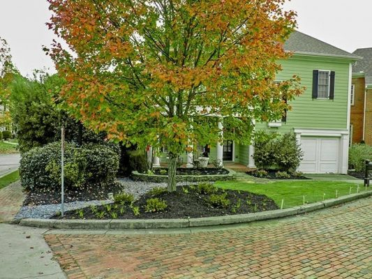 brick driveway of green house with front yard tree with leaves changing colors