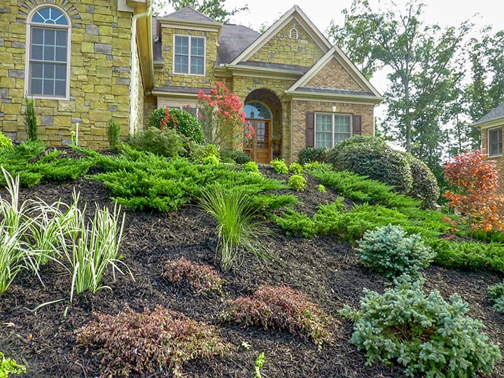 front yard landscaping for stone house with green softscaping and shrubbery