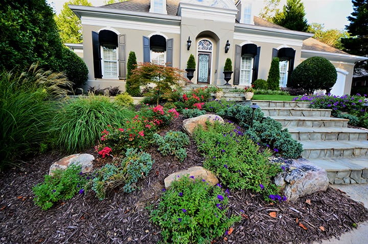 front yard landscape design with purple and pink flowers with stone stairway leading to front door