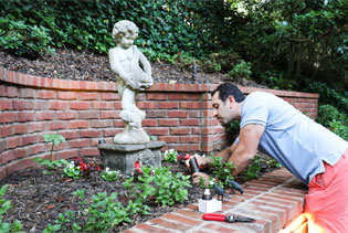 outdoor landscape designs plants flowers in front of stone statue and brick wall feature