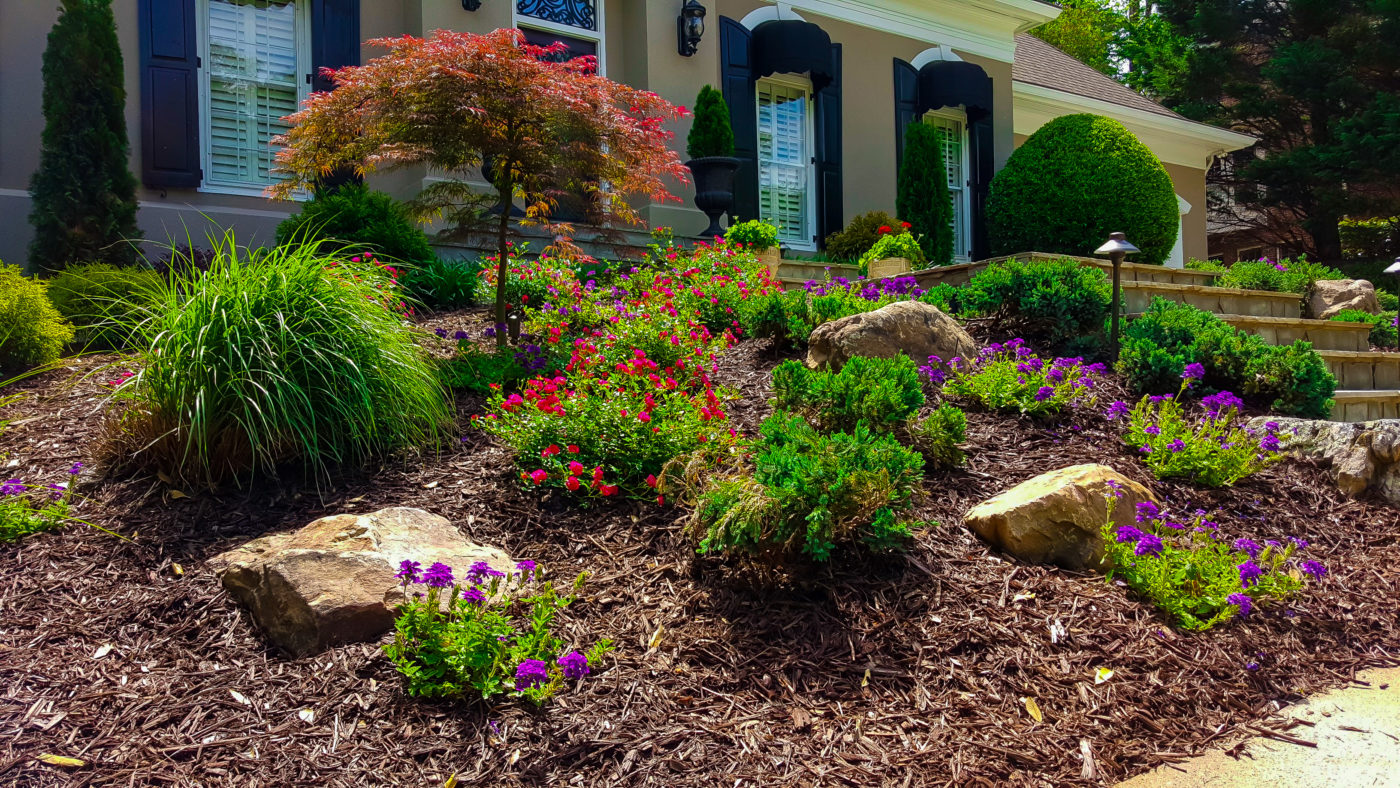 front yard landscape design with purple and red softscape and decorative rocks