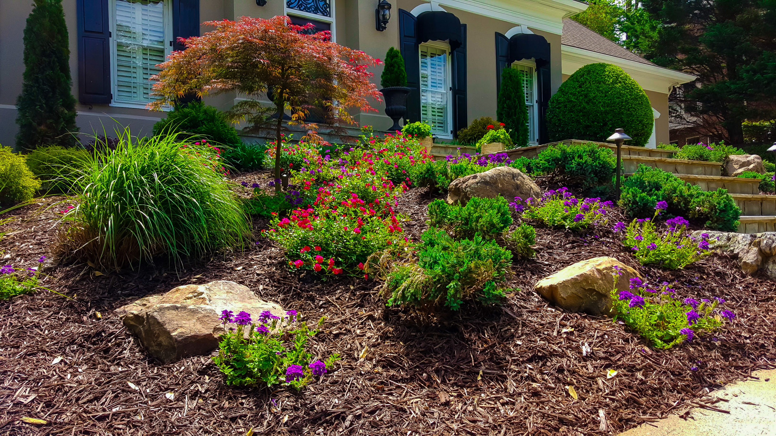 Care Of New Landscape Plants Outdoor Makeover