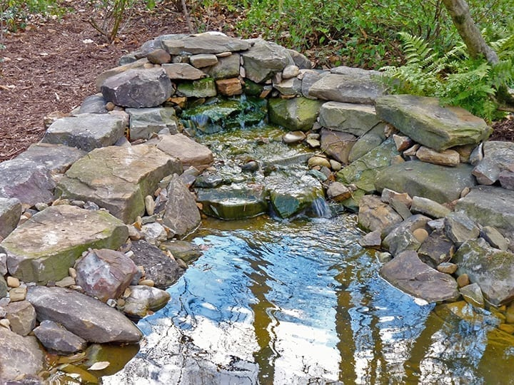 stone water fall feature with landscape pond surrounded by ferns and softscape